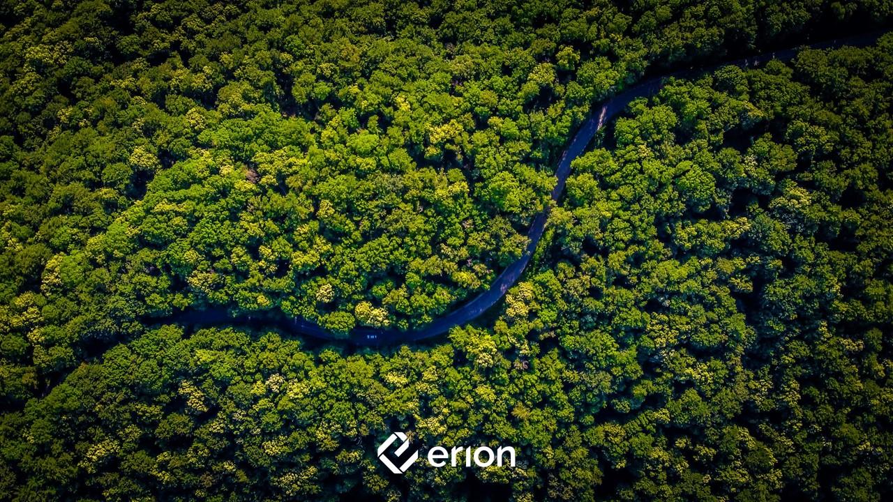 Foresta Erion